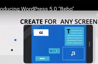 WordPress Version 5.0 is here